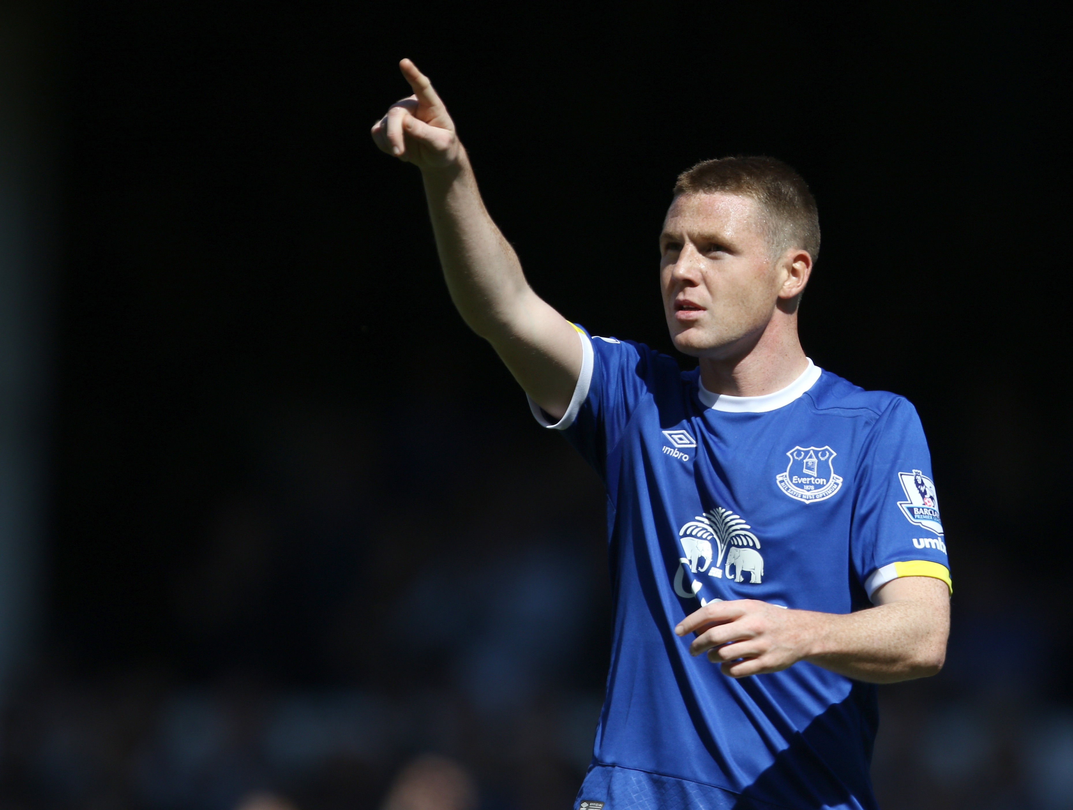 Everton's James McCarthy celebrates scoring his side's first goal of the game during the Barclays Premier League match at Goodison Park, Liverpool.