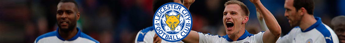 leicester-banner