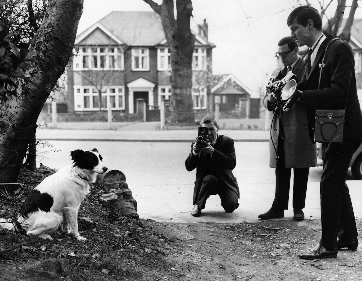 Pickles the Dog is the toast of the media after finding the World Cup before the 1966 World Cup