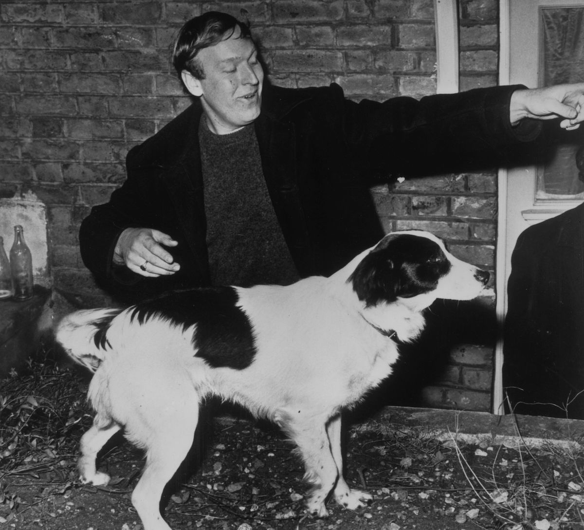 Pickles the Dog, who found the Jules Rimet Trophy ahead of the 1966 World Cup, with his owner David Corbett